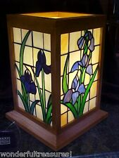 1  ONLY! Genuine HM STAINED GLASS Lamp Irises ALL 4 SIDES & WOOD Frame Case FAB!