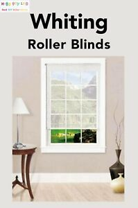 Daylight Roller Blinds Beautiful Fabric Without Drill Size(60-300)x210/280cm