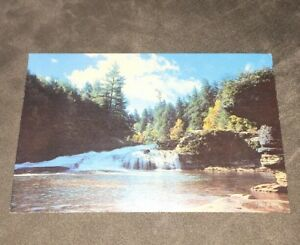 1970's Swallow Falls State Park Postcard - Maryland - Unused