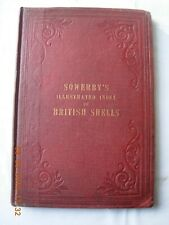 Sowerby's Illustrated Index of British Shells 1859 First edition