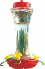 Audubon Glass Hummingbird Feeder 16 Oz Red/Clear