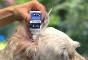 Dogs and Cats eye and ear drops Prodex – 10 ml (0.33fl. oz)
