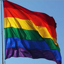 Dainty Rainbow Flag Durable Big Polyester Lesbian Gay Pride Symbol LGBT Flags