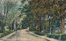 ST. JOHNSBURY VT – Western Avenue - 1915