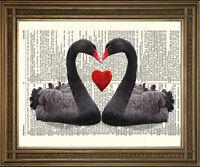 BLACK SWAN PRINT RED LOVE HEART: ANTIQUE DICTIONARY PAGE ROMANTIC BIRD ART PRINT