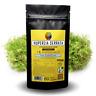 Huperzine A 200mcg Capsules - Memory Supplement - Huperzia Extract Herbal