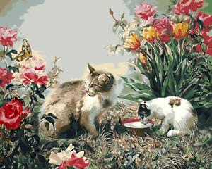 Large Paint By Numbers Kit 50*40cm 8133 Fun Art Decor Cats AU