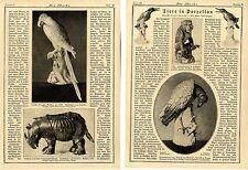 Dr.Franz Servaes: Tiere in Porzellan Historical Memorabilia von 1921