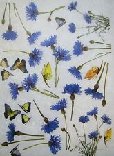 Rice Paper for Decoupage Scrapbook Craft Blue Flowers 321