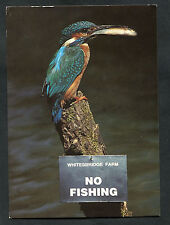 Posted 1999: Kingfisher with Fish on a No Fishing Sign: Whitesbridge Farm