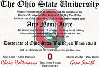 THE OHIO STATE BUCKEYES  BASKETBALL~ CERTIFICATE ~DIPLOMA  ~ MAN CAVE ~