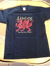 WELSH DRAGON design  BLACK TEE SHIRT, Size XXL adult,  Wales/ Cymru