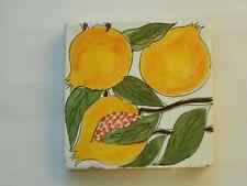 Decoro in argilla,cotto fatto a mano,piastrella tipo ceramica vietri cm. 15x15