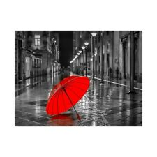 Red Umbrella Art Poster Wall Hanging Decoration Canvas Prints Gift