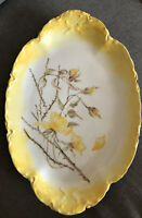 1880-1896 Haviland And Co. Yellow Rose Platter. Incredible Find. Great Shape!