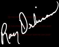 """x1 9 inch wide /""""Stevie Ray Vaughn/"""" decal sticker decals rock /& roll autograph"""