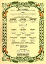 Limerick All-Ireland Senior Hurling Champions 1973: GAA Print
