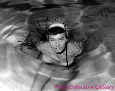 Actress Sophia Loren (44) - Celebrity Photo Print