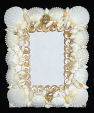 "White Seashell Table Top Photo Picture Frame ~ 8"" X 10"" ~ With Front Glass Panel"