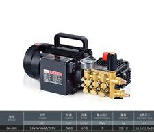 QL-390 copper household cleaning machine high pressure car washer pump 7Mpa Y