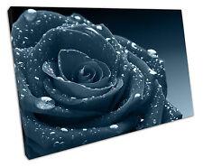 Eau Rose Foncé Turquoise TOILE murale ART Photo Large 75 x 50 cm