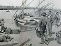 Sicilian Italian fishermen docks San Francisco crab fishing 1889 Farny old print