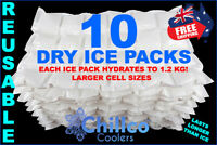 10 X SHEETS DRY GEL ICE PACKS - REUSABLE - HYDRATES TO 1.2 KG - DRY ICE PACKS