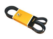 Serpentine Belt CRP PK080810