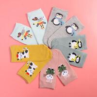 5pcs Women Cute Cartoon Stocking Animal Cotton Short Socks No Show Sock Slipper