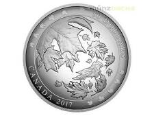 $50 Dollar Convex Maple Leaf Leaves in Motion 5 oz Fine Silver Canada 2017