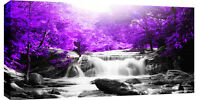 LARGE WATERFALL PURPLE TREES BOX CANVAS WALL ART PICTURE  103 x 52 cm 3cm frame