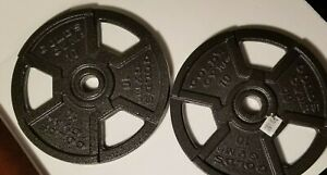 Golds Gym Pair Of (2) 10 Pound lb Weight Plates - 20 lbs Total NEW WGGSP1012