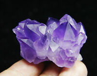 Rare Natural Skeletal Amethyst Clear QUARTZ Crystal point Mineral Specimen