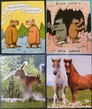 1 Brillenputztuch Bär Bären Pferd Pferde Pony Ponys Brille Brillenputztücher neu