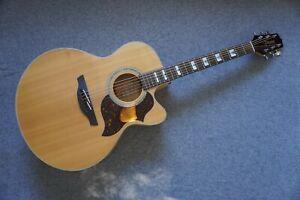 Takamine EG523SC Maple Electro-Acoustic Jumbo Guitar ~ Mother Pearl ~ Beautiful!