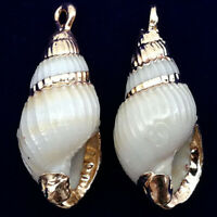 10Pcs 25x11x8mm Natural Gold Plated White Spiral Seashell Conch Pendant A-50BK