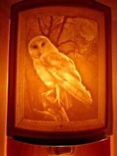 Porcelain Garden Lithophane Night Light Hand Made NR270 OWL Birds Ornithology