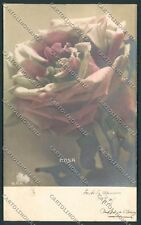 Fiori Flowers Rose foto cartolina E3507 SZL