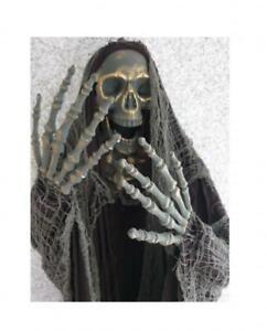 Skelett Totenkopf Fetzen Halloween Dark Night Hexer Horror Geist Deko Dekoration