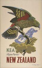 "Vintage Illustrated Travel Poster CANVAS PRINT New Zealand Kea 24""X16"""