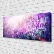 Leinwand-Bilder Wandbild Canvas Kunstdruck 125x50 Blumen Pflanzen