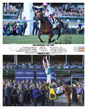 Enable Breeders' Cup Turf 2018 Photo 10 x 8