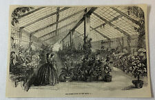 1877 magazine engraving ~ THE CONSERVATORY AT THE WHITE HOUSE ~ botany