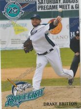 2017 Bridgeport Bluefish Drake Britton Atlantic League Independent