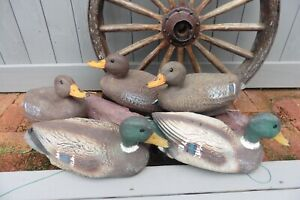 Lot of 5 Decoy Duck Drake Mallards Hen Plastic Hunting Pond Lake Cabin Decor
