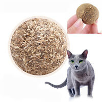 Fashion Pet Kitten Cat Mint Ball Cute Play Toys Ball Coated Catnip Bell ToyRASK