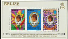 Prince William Birth Honored on Diana Mint NH Souvenir Sheet Belize #634 $13.Val