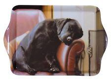 dormir Labrador Cachorro Negro Marrón melamina portando Abalorio bandeja
