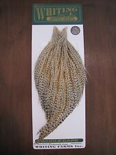 Fly Tying-Whiting Farms H/M Bronze Rooster Cape Unique Variant #W