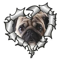 Ripped Torn Metal Look HEART With Cute PUG Pet Dog Eyes vinyl car sticker Decal